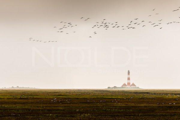 Wandbild Leuchtturm Westerheversand