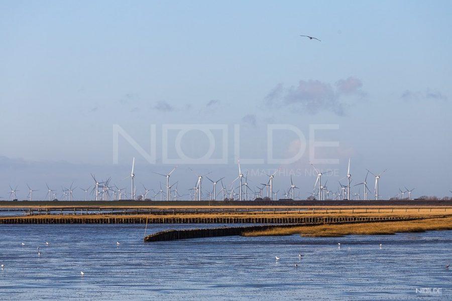 Nordseeküste 11